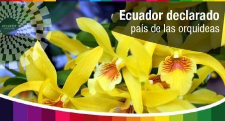 Ecuador - Pais de las Orquideas